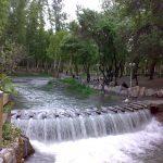 Malek garden